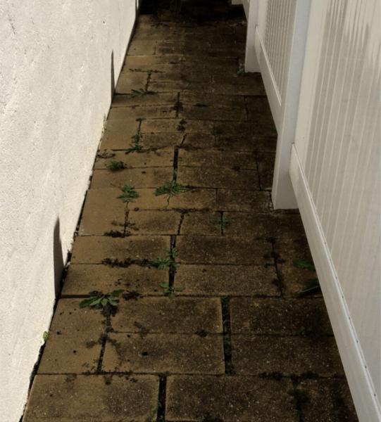 9x6-walkway-before